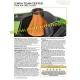 TWIN AIR filtro benzina serbatoio KTM SX - F 250 e 350 dal 2013 al 2018